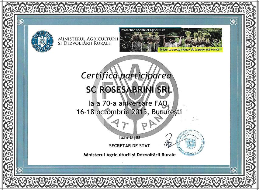 diplome-rose0004_1