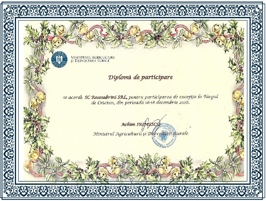 diplome-rose-0015-01-01